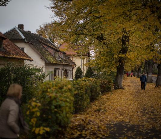 п.Янтарный, Калининградская област. Фото Дениса Синякова для PREGEL.INFO