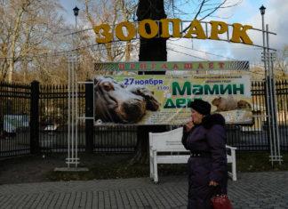 Зоопарк, Калининград. Фото Леся Ким