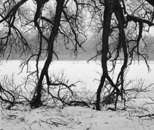 Прусская зима. Александр Матвеев для PREGEL.INFO
