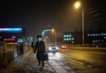 Андрей Кучко для PREGEL.INFO