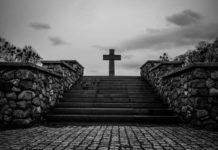 Кладбище «Кранцер Аллея» © Александр Пожидаев для PREGEL.INFO