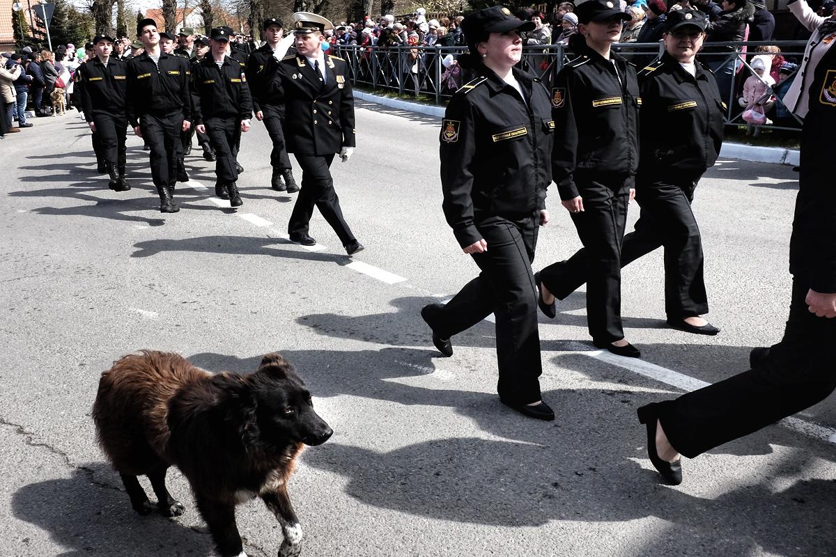Фото Олега Климова, Янтарный.