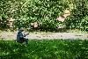 Улица Юношеская, Калининград © Александр Пожидаев для PREGEL.INFO
