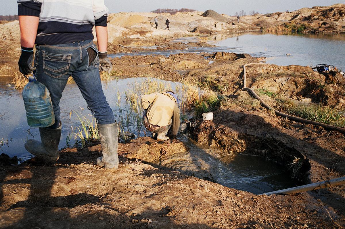 Нелегальная добыча янтаря в Калининградской области