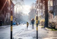 Улица Зоологическая © Александр Пожидаев для PREGEL.INFO