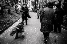 Улица Багратиона, Калининград © Софья Сандурская для PREGEL.INFO