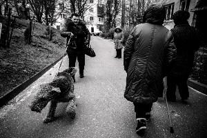 Улица Багратиона, Калининград © Софья Сандурская @ Школа №16 | Калининград | Калининградская область | Россия