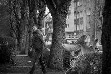 Советский проспект, Калининград © Александр Пожидаевдля PREGEL.INFO