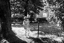 Улица Римского-Корсакова, Калининград © Александр Пожидаев для PREGEL.INFO